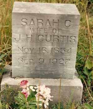 CURTIS, SARAH - Newton County, Arkansas | SARAH CURTIS - Arkansas Gravestone Photos
