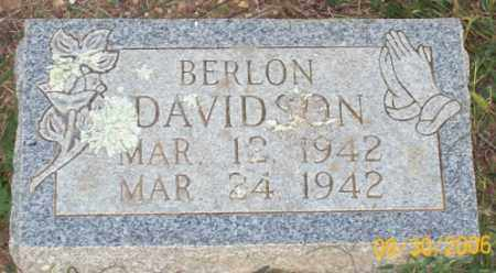 DAVIDSON, BERLON - Newton County, Arkansas | BERLON DAVIDSON - Arkansas Gravestone Photos