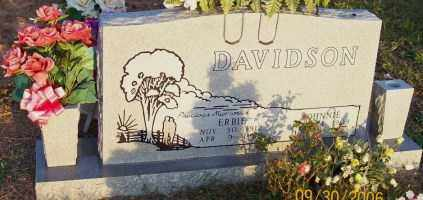 DAVIDSON, ERBIE LAVERN - Newton County, Arkansas | ERBIE LAVERN DAVIDSON - Arkansas Gravestone Photos