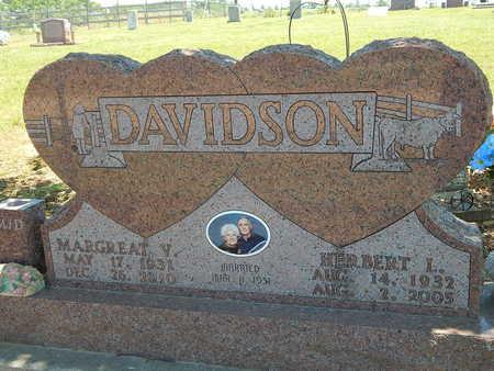 DAVIDSON, HERBERT L. - Newton County, Arkansas | HERBERT L. DAVIDSON - Arkansas Gravestone Photos