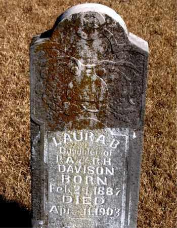 DAVIDSON, LAURA B. - Newton County, Arkansas | LAURA B. DAVIDSON - Arkansas Gravestone Photos