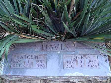 DAVIS, JOHN NEWTON - Newton County, Arkansas | JOHN NEWTON DAVIS - Arkansas Gravestone Photos