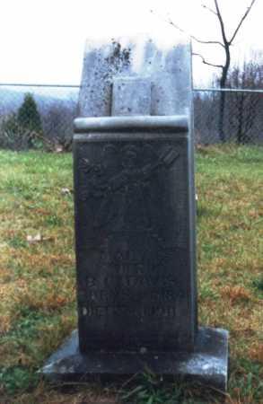 BLACKWOOD DAVIS, MARY - Newton County, Arkansas | MARY BLACKWOOD DAVIS - Arkansas Gravestone Photos