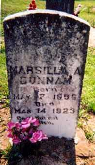 DUNNAM, MARSILLA A. - Newton County, Arkansas | MARSILLA A. DUNNAM - Arkansas Gravestone Photos