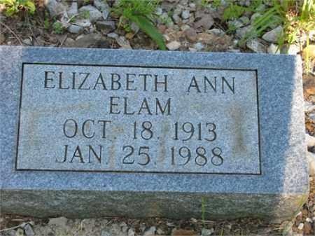 ELAM, ELIZABETH ANN - Newton County, Arkansas | ELIZABETH ANN ELAM - Arkansas Gravestone Photos