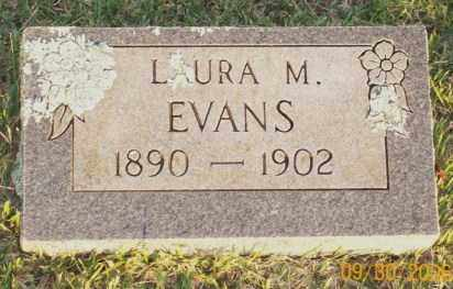 EVANS, LAURA M. - Newton County, Arkansas | LAURA M. EVANS - Arkansas Gravestone Photos