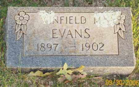 EVANS, WINFIELD M. - Newton County, Arkansas | WINFIELD M. EVANS - Arkansas Gravestone Photos
