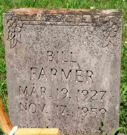 FARMER, BILL - Newton County, Arkansas | BILL FARMER - Arkansas Gravestone Photos