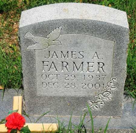 FARMER, JAMES A - Newton County, Arkansas   JAMES A FARMER - Arkansas Gravestone Photos