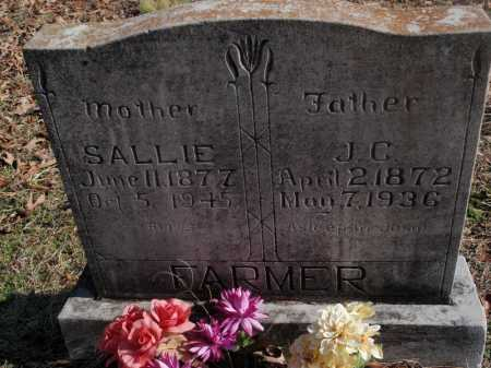 FARMER, SALLLIE - Newton County, Arkansas | SALLLIE FARMER - Arkansas Gravestone Photos