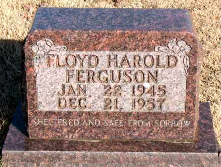 FERGUSON, FLOYD HAROLD - Newton County, Arkansas | FLOYD HAROLD FERGUSON - Arkansas Gravestone Photos