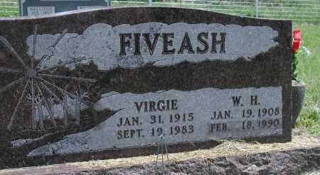 FIVEASH, W H - Newton County, Arkansas | W H FIVEASH - Arkansas Gravestone Photos