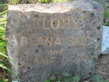 FLORY, DEANA SUE - Newton County, Arkansas | DEANA SUE FLORY - Arkansas Gravestone Photos