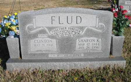 FLUD, CLINTON - Newton County, Arkansas | CLINTON FLUD - Arkansas Gravestone Photos