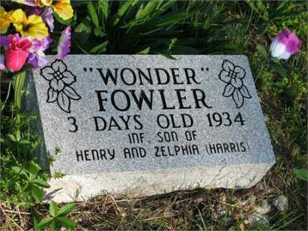 "FOWLER, ""WONDER"" - Newton County, Arkansas 