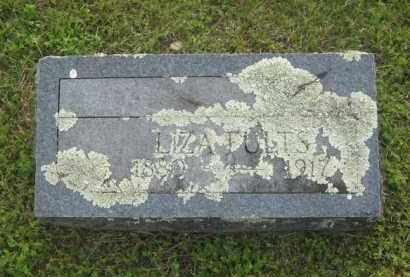 FULTS, LIZA - Newton County, Arkansas | LIZA FULTS - Arkansas Gravestone Photos