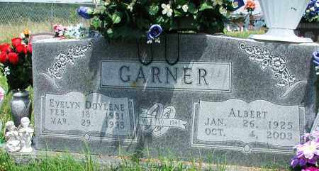 GARNER, ALBERT - Newton County, Arkansas | ALBERT GARNER - Arkansas Gravestone Photos
