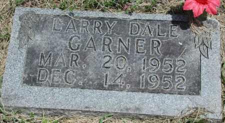 GARNER, LARRY DALE - Newton County, Arkansas | LARRY DALE GARNER - Arkansas Gravestone Photos
