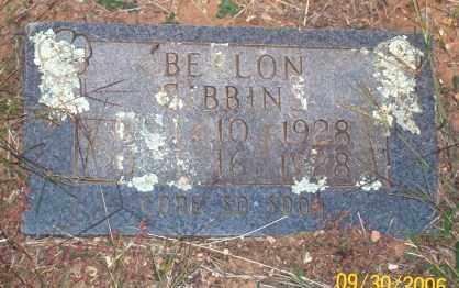 GIBBINS, BERLON - Newton County, Arkansas | BERLON GIBBINS - Arkansas Gravestone Photos