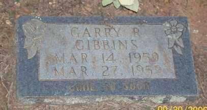 GIBBINS, GARRY R. - Newton County, Arkansas | GARRY R. GIBBINS - Arkansas Gravestone Photos