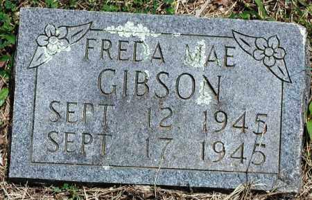 GIBSON, FREDA MAE - Newton County, Arkansas | FREDA MAE GIBSON - Arkansas Gravestone Photos
