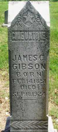 "GIBSON, JAMES CARLIE ""JIM"" - Newton County, Arkansas | JAMES CARLIE ""JIM"" GIBSON - Arkansas Gravestone Photos"