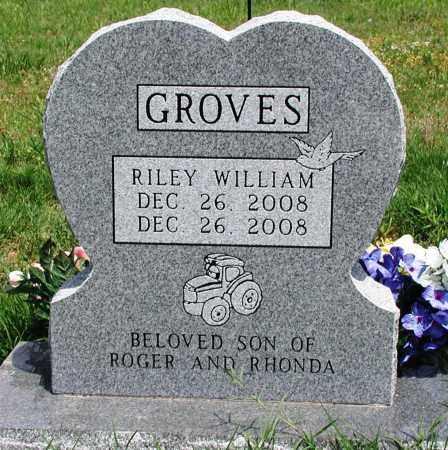GROVES, RILEY WILLIAM - Newton County, Arkansas | RILEY WILLIAM GROVES - Arkansas Gravestone Photos