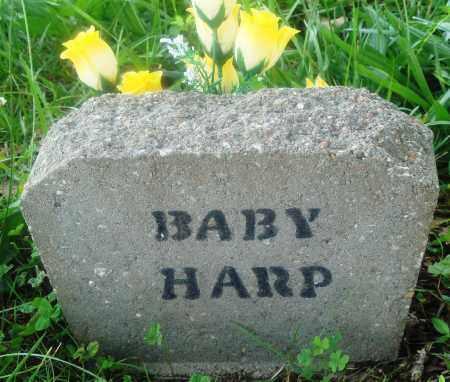 HARP, BABY - Newton County, Arkansas | BABY HARP - Arkansas Gravestone Photos