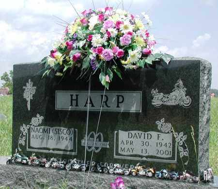HARP, DAVID F - Newton County, Arkansas | DAVID F HARP - Arkansas Gravestone Photos