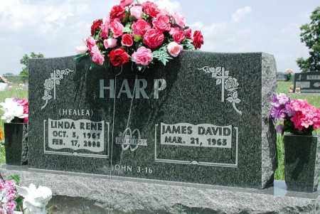HARP, LINDA RENE - Newton County, Arkansas | LINDA RENE HARP - Arkansas Gravestone Photos