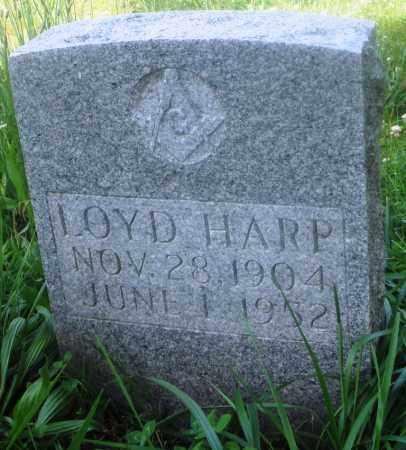 HARP, LOYD - Newton County, Arkansas | LOYD HARP - Arkansas Gravestone Photos