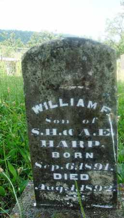 HARP, WILLIAM F - Newton County, Arkansas | WILLIAM F HARP - Arkansas Gravestone Photos
