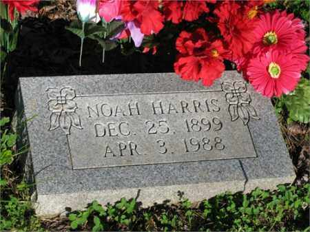 HARRIS, NOAH - Newton County, Arkansas | NOAH HARRIS - Arkansas Gravestone Photos