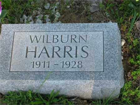 HARRIS, WILBURN - Newton County, Arkansas | WILBURN HARRIS - Arkansas Gravestone Photos