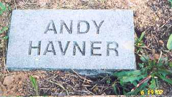 HAVNER, ANDY - Newton County, Arkansas | ANDY HAVNER - Arkansas Gravestone Photos