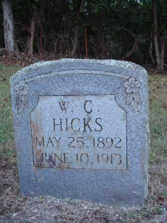HICKS, W. C. - Newton County, Arkansas | W. C. HICKS - Arkansas Gravestone Photos