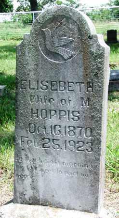 REECE HOPPIS, ELISEBETH - Newton County, Arkansas | ELISEBETH REECE HOPPIS - Arkansas Gravestone Photos