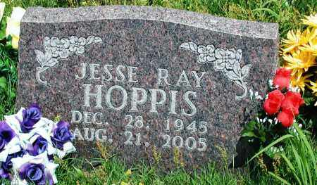 HOPPIS, JESSE RAY - Newton County, Arkansas | JESSE RAY HOPPIS - Arkansas Gravestone Photos