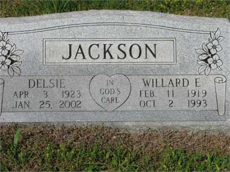 JACKSON, WILLARD E. - Newton County, Arkansas | WILLARD E. JACKSON - Arkansas Gravestone Photos