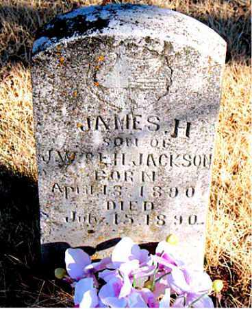 JACKSON, JAMES H. - Newton County, Arkansas | JAMES H. JACKSON - Arkansas Gravestone Photos