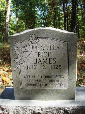 RICH JAMES, PRISCILLA - Newton County, Arkansas | PRISCILLA RICH JAMES - Arkansas Gravestone Photos