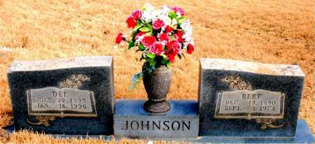 JOHNSON, DEE - Newton County, Arkansas | DEE JOHNSON - Arkansas Gravestone Photos