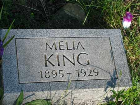 KING, MELIA - Newton County, Arkansas | MELIA KING - Arkansas Gravestone Photos