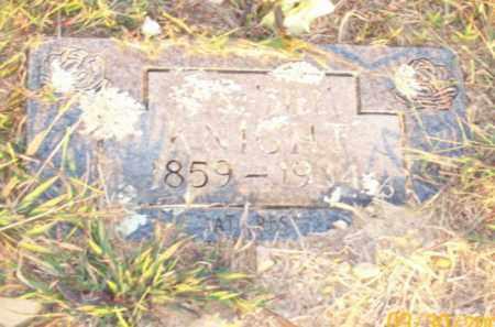 KNIGHT, W  BILL - Newton County, Arkansas | W  BILL KNIGHT - Arkansas Gravestone Photos