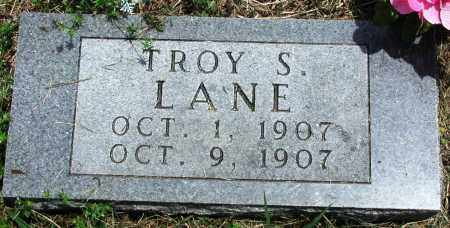LANE, TROY S - Newton County, Arkansas | TROY S LANE - Arkansas Gravestone Photos