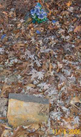 LAWSON, INFANT - Newton County, Arkansas | INFANT LAWSON - Arkansas Gravestone Photos