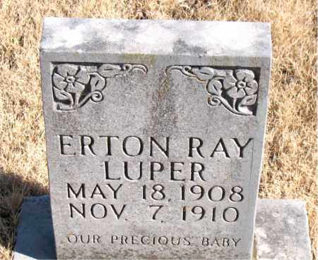 LUPER, ERTON RAY - Newton County, Arkansas | ERTON RAY LUPER - Arkansas Gravestone Photos