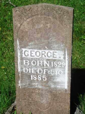 MABERRY, GEORGE - Newton County, Arkansas   GEORGE MABERRY - Arkansas Gravestone Photos