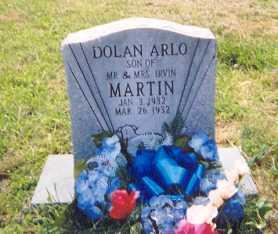MARTIN, DOLAN ARLO - Newton County, Arkansas | DOLAN ARLO MARTIN - Arkansas Gravestone Photos
