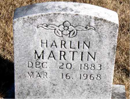 MARTIN, HARLIN - Newton County, Arkansas | HARLIN MARTIN - Arkansas Gravestone Photos